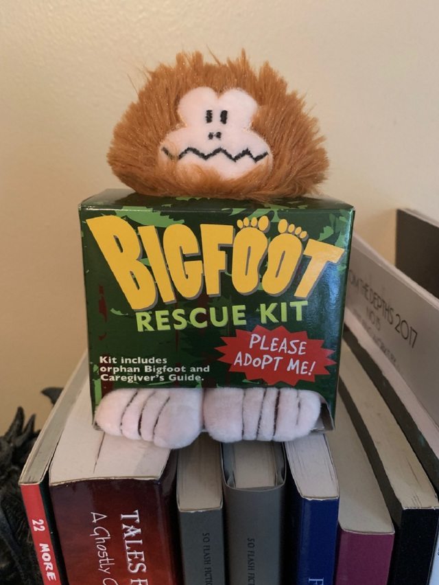Bigfoot rescue kit.jpg