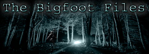 bigfootfiles.png